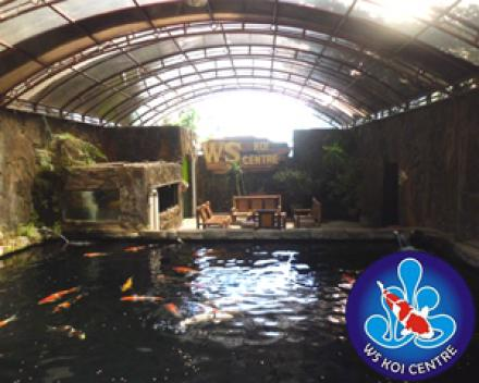 Potensi Wisata WS Koi Center di Desa Wonokromo